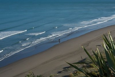 new zealand's best beaches