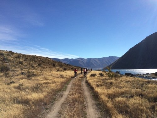 Best New Zealand Bike Trails