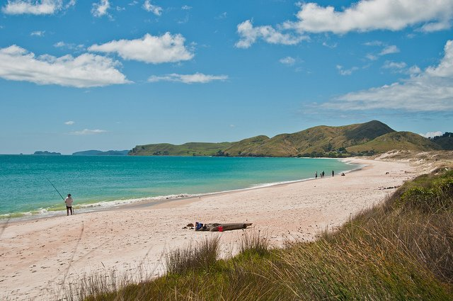 beautiful beaches on a north island cycle tour
