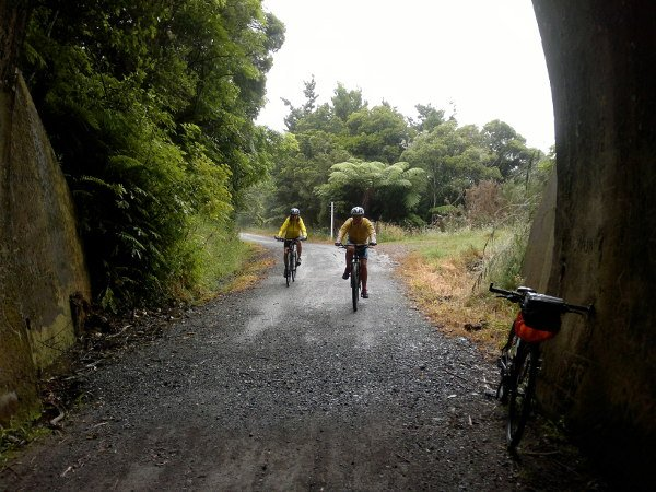 Ride the Twin Coast Cycle Trail