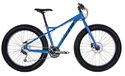 Avanti Tracker – Fat Bike-thumbnail image